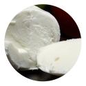 Mocarella(mozzarella)